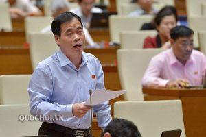 Giảm Phó Chủ tịch HĐND cấp tỉnh, huyện trong cả nước: Không nên quy định cứng nhắc