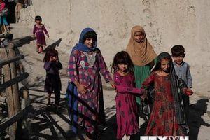 UNHCR cảnh báo việc cho hồi hương người tị nạn Afghanistan