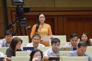 Đại biểu đề nghị bổ sung truy cập dữ liệu điện tử cho kiểm toán viên