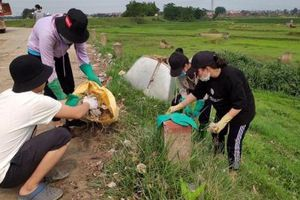 Tuổi trẻ huyện Sóc Sơn chung tay xây dựng Nông thôn mới