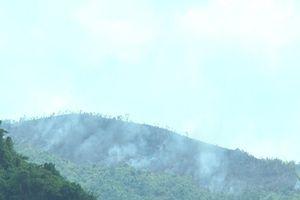 Nỗ lực khống chế đám cháy thực bì do đốt rẫy tại Nghệ An