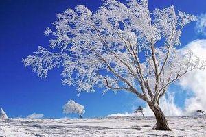 Những quốc gia có khí hậu lạnh nhất thế giới
