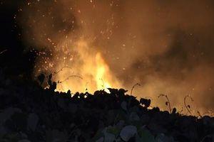 Hàng trăm người nỗ lực dập tắt đám cháy lớn ở Sơn Trà