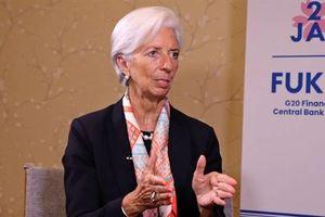 IMF: Càng kéo dài thương chiến, Mỹ càng thiệt hại nặng