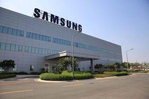 Nhà máy Việt Nam lỗ 1.000 tỷ, lợi nhuận Samsung 'tụt dốc không phanh'