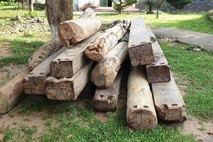Thu giữ 15 khúc gỗ vô chủ ở khu vực biên giới
