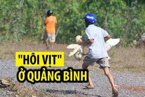 Thực hư chuyện 'hôi của hàng trăm con vịt' sau tai nạn lật xe ở Quảng Bình