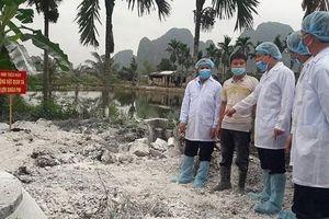 Đẩy mạnh tuyên truyền phòng, chống bệnh dịch tả lợn châu Phi