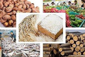 Những mặt hàng nông sản xuất khẩu chủ lực của Việt Nam