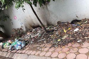 Hà Nội: Bãi rác bao vây trường học tại Khu Đô thị Mỹ Đình 1 đã bị dẹp nhưng vẫn còn nguy cơ tái phát