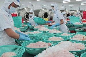 Cơ hội xuất khẩu cá tra vào 10 nước CPTPP