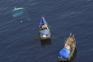 Hàn Quốc cho hồi hương nhân đạo các thuyền viên Triều Tiên