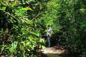 Hé lộ nguyên nhân nam thanh niên tử vong bất thường trong rừng vắng