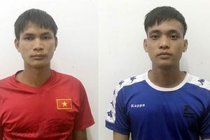 Quảng Ninh: 3 bố con bị khởi tố vì chặt phá tới hơn 30.000 m2 rừng phòng hộ để trồng keo