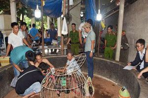 Thừa Thiên Huế: Đánh sập sới gà cá độ lớn tại vùng quê