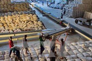 Trung Quốc sẽ mua một lượng gạo trị giá 500 triệu USD của Myanmar