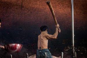 Đánh đập đến bất tỉnh và sự tàn bạo trong các lò mổ lợn Thái Lan