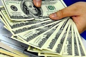 Tỷ giá trung tâm và đồng USD trao đổi trong các ngân hàng giảm sâu