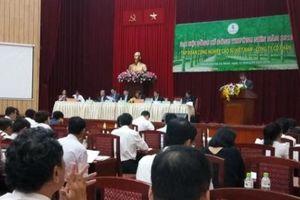 Tập đoàn Cao su chuyển hướng trồng dược liệu, làm nông nghiệp công nghệ cao