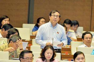 ĐBQH đề xuất thu 'phí chia tay' với công dân khi xuất cảnh ra nước ngoài