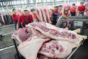 TP HCM xử lý tốt thông tin về dịch tả lợn châu Phi