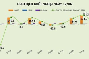 Phiên 12/6: Giảm mạnh giao dịch, khối ngoại chuyển sang bán ròng nhẹ 21 tỷ đồng