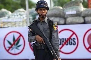 Myanmar: Gian nan cuộc chiến chống ma túy