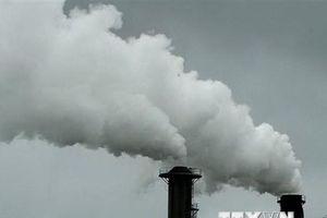 Nhật Bản đặt mục tiêu đưa khí thải về 0 trong nửa cuối thế kỷ 21