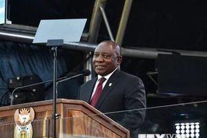 Tổng thống Nam Phi Cyril Ramaphosa bị điều tra nghi án tham nhũng