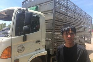 Vụ xe lật giữa đường ở Quảng Bình: Nhiều người 'hôi của' đến chục con vịt, lái xe van xin trong vô vọng