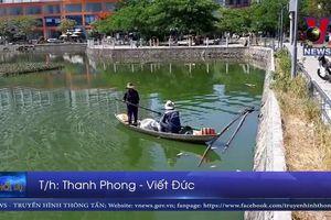 Cá chết tại hồ điều tiết của Đà Nẵng