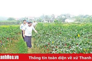 Nghiêm túc khắc phục những hạn chế, yếu kém ở huyện Thường Xuân
