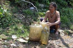 Người dân miền núi Quảng Nam thiếu nước sinh hoạt vì nắng hạn