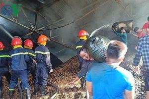 'Bà hỏa' thiêu cháy xưởng chế biến lạc, thiệt hại 10 tỉ đồng