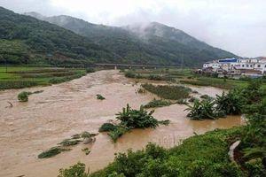 49 người thiệt mạng do mưa lũ ở Trung Quốc