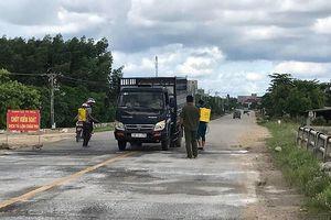 Bình Thuận tiêu hủy 865 con heo mắc dịch tả heo châu Phi