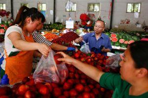 Giá táo tăng vọt, chính quyền Trung Quốc tìm cách trấn an người dân
