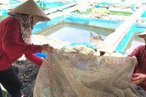Nhốt cá vào lồng, hết cảnh treo niêu mà cả làng còn đổi đời