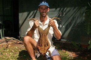 Kinh ngạc loài ếch 'khổng lồ' nặng gần chục cân