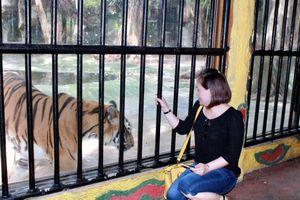 Góc nhìn phóng viên: Đừng 'khoán trắng' cho chủ nuôi thú dữ