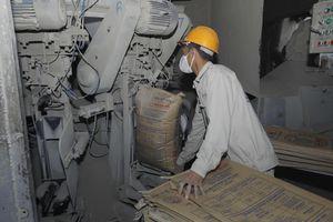 Trung Quốc tăng nhập xi măng Việt Nam