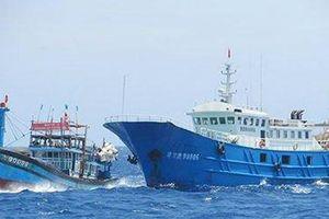 Ngư dân quyết bám biển dù bị 'tàu lạ' tấn công
