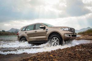 Ford Việt Nam công bố kỷ lục mới về doanh số đối với dòng xe Everest
