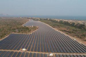 Nhà máy Điện mặt trời Mũi Né do Dragon Capital đầu tư chính thức được vận hành