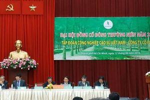 ĐHĐCĐ Tập đoàn Công nghiệp Cao su Việt Nam: Lãnh đạo trả lời về hướng xử lý sở hữu chéo