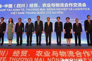 Đẩy mạnh hợp tác kinh tế-thương mại Việt Nam và Trung Quốc