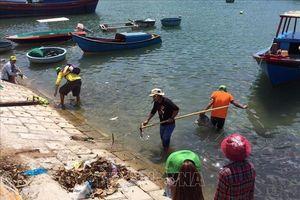Ninh Thuận chú trọng xử lý ô nhiễm môi trường biển và các làng nghề
