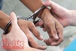 Băng nhóm trộm cắp xe máy bị tóm gọn khi đang 'phê' ma túy