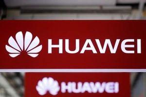 Hoa Kỳ đồng ý gia hạn cho các công ty làm ăn với Huawei