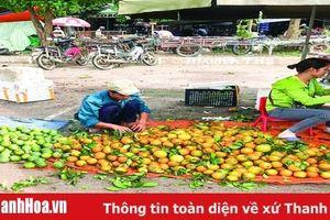Cẩn trọng với sinh tố, nước ép trái cây giá rẻ